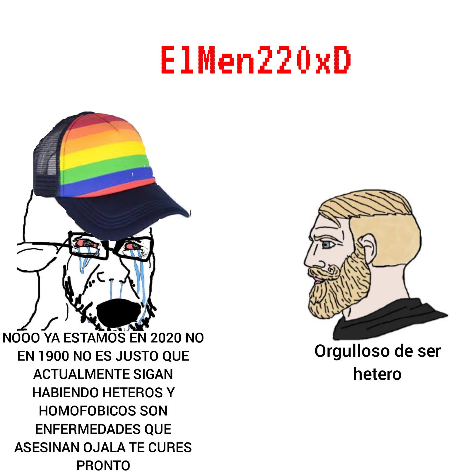 Orgulloso de ser hetero - meme