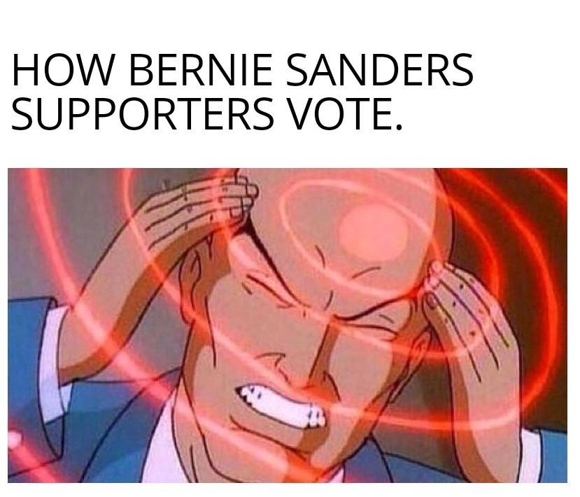 Bernie - meme