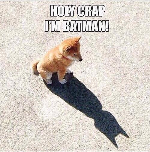 I'm Batman - meme