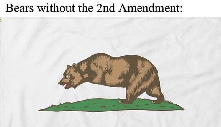bear arms - meme