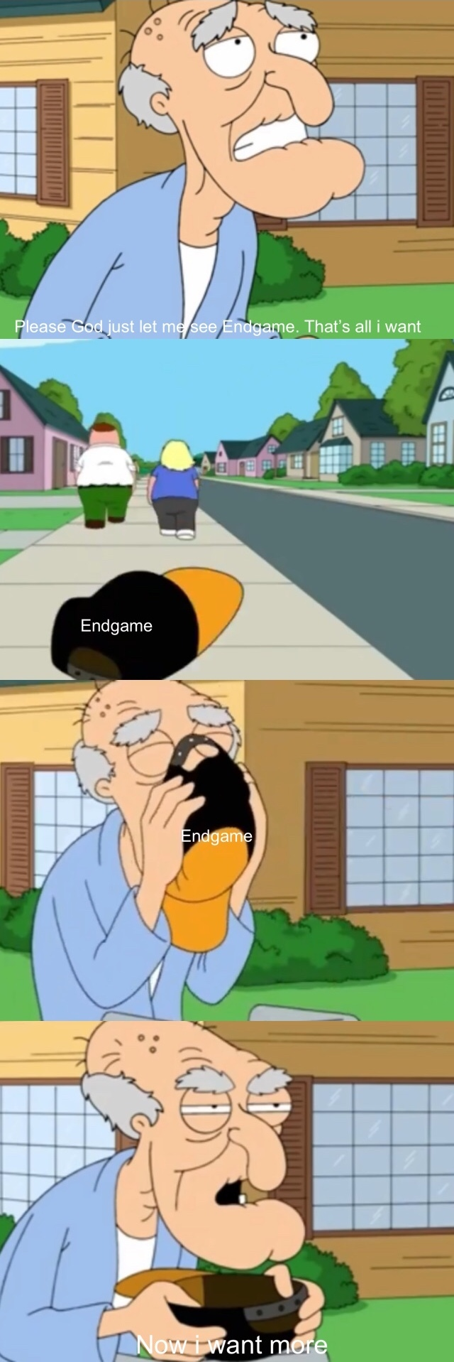 I salute those who fought the Endgame spoilers - meme