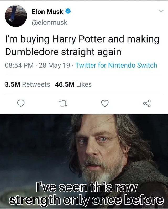 I'm burying Harry Potter and making Dumbledore straight again - meme