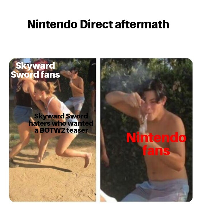 Motion controls are fine. - meme