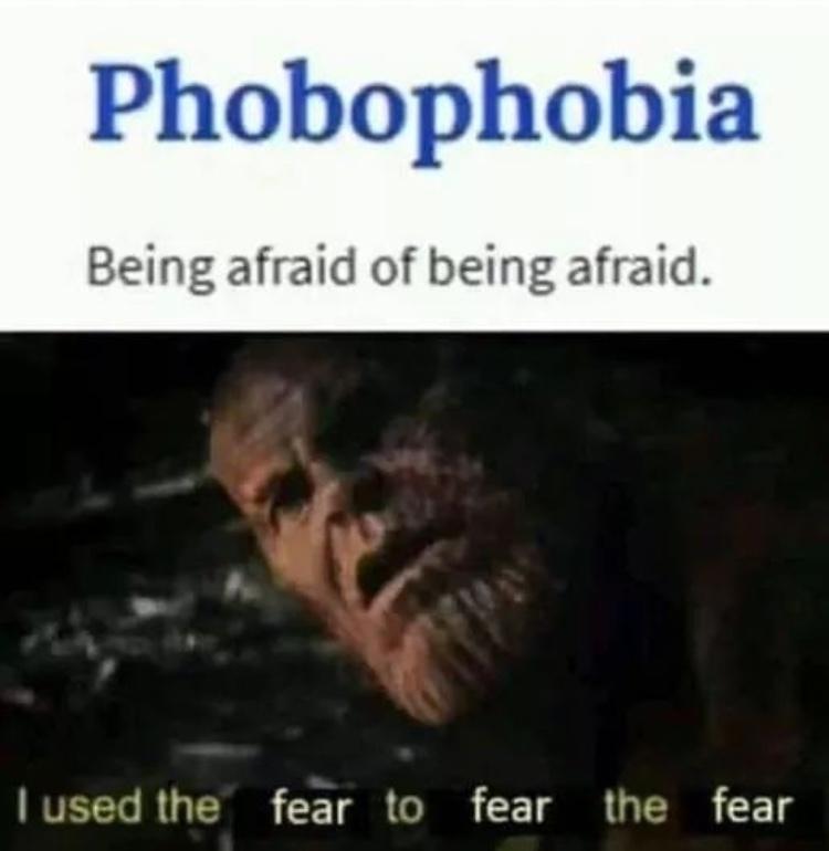 fear - meme