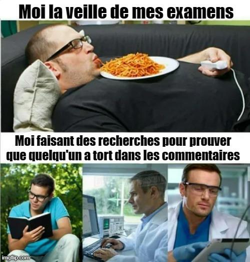 D'ailleurs les frites sont française (cf Pierre Leclercq) - meme