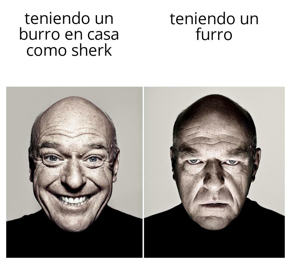 Viva shrek - meme