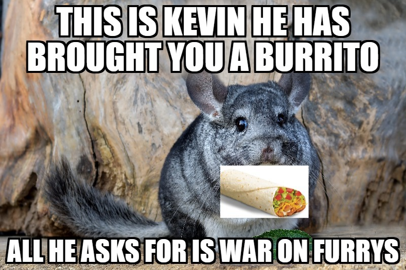 Thank you kevin - meme