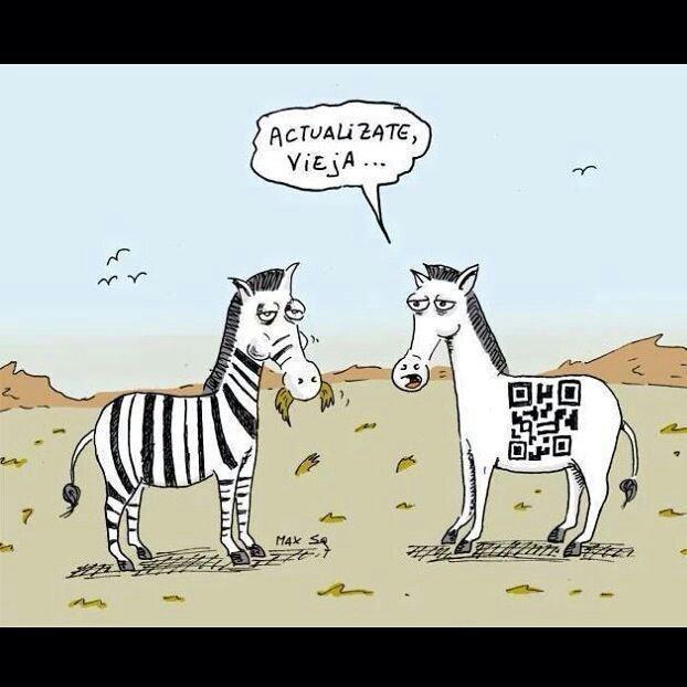 Cebras - meme
