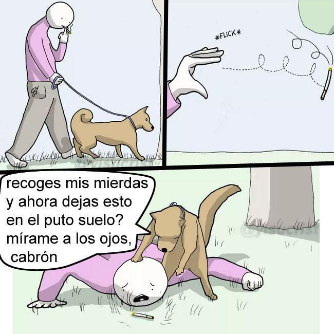Bien perro - meme