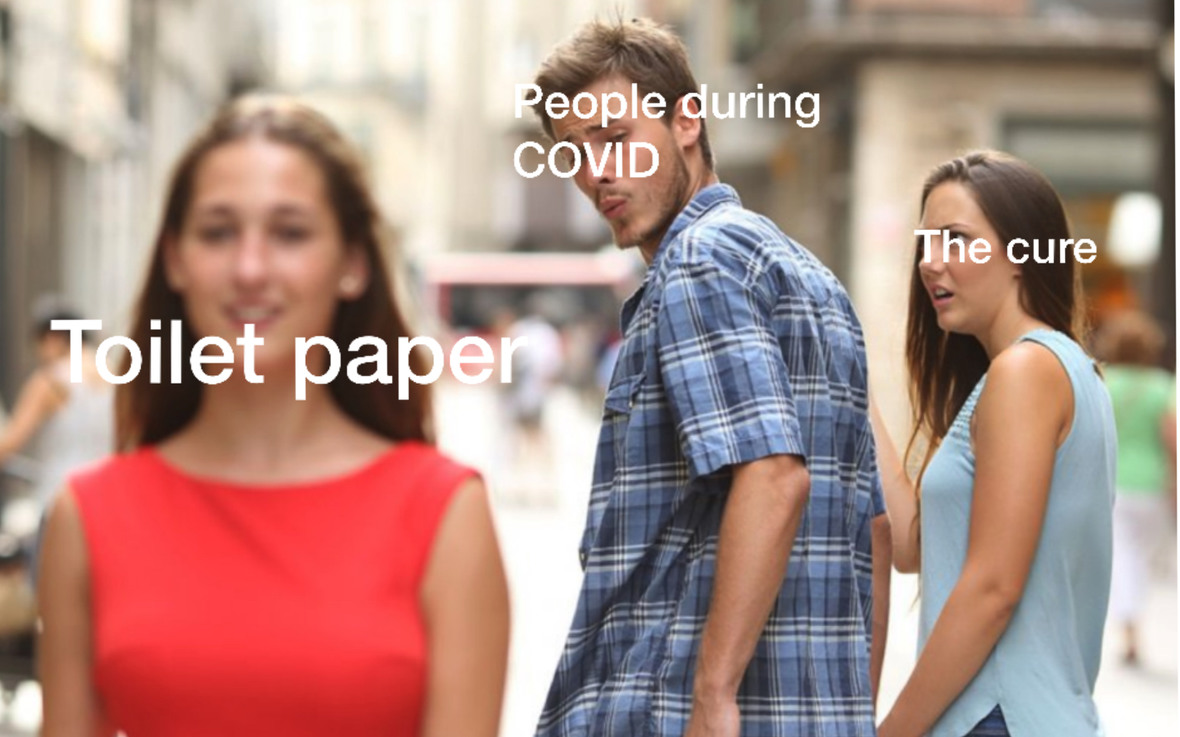 Toilet paper is the cure. - meme