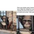 Un peruano escribiendo. Se le ve muy fresco al pana la verdad