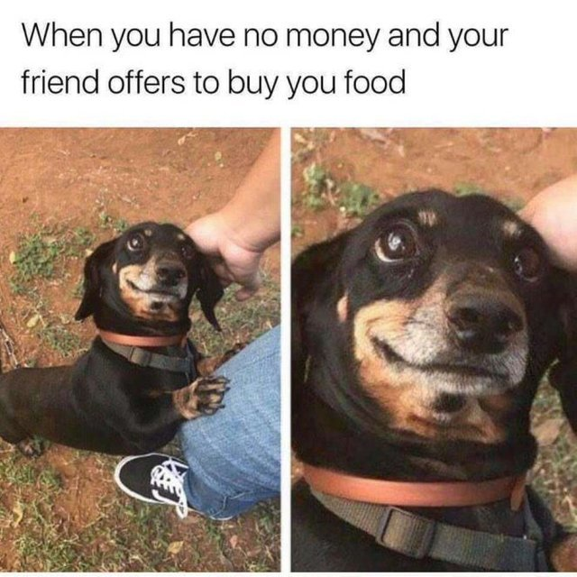 When you have no money and your friend offers to buy you food - meme
