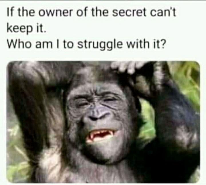 I don't keep Secrets! - meme