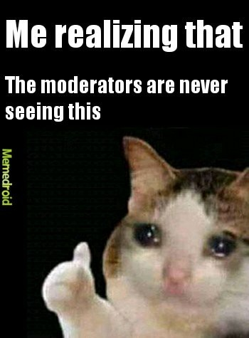 Moderators are not gonna see this - meme