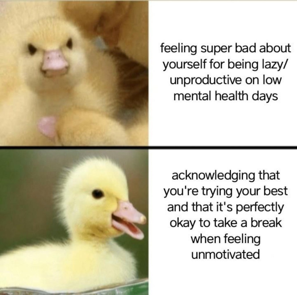 Yes I have returned - meme