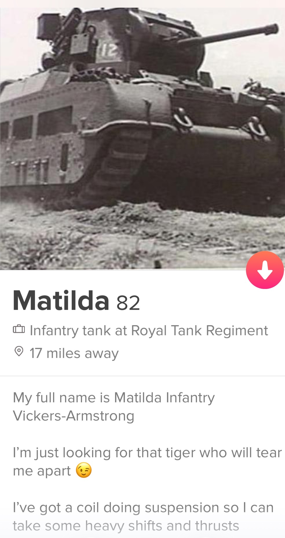 Title is real tinder profile - meme