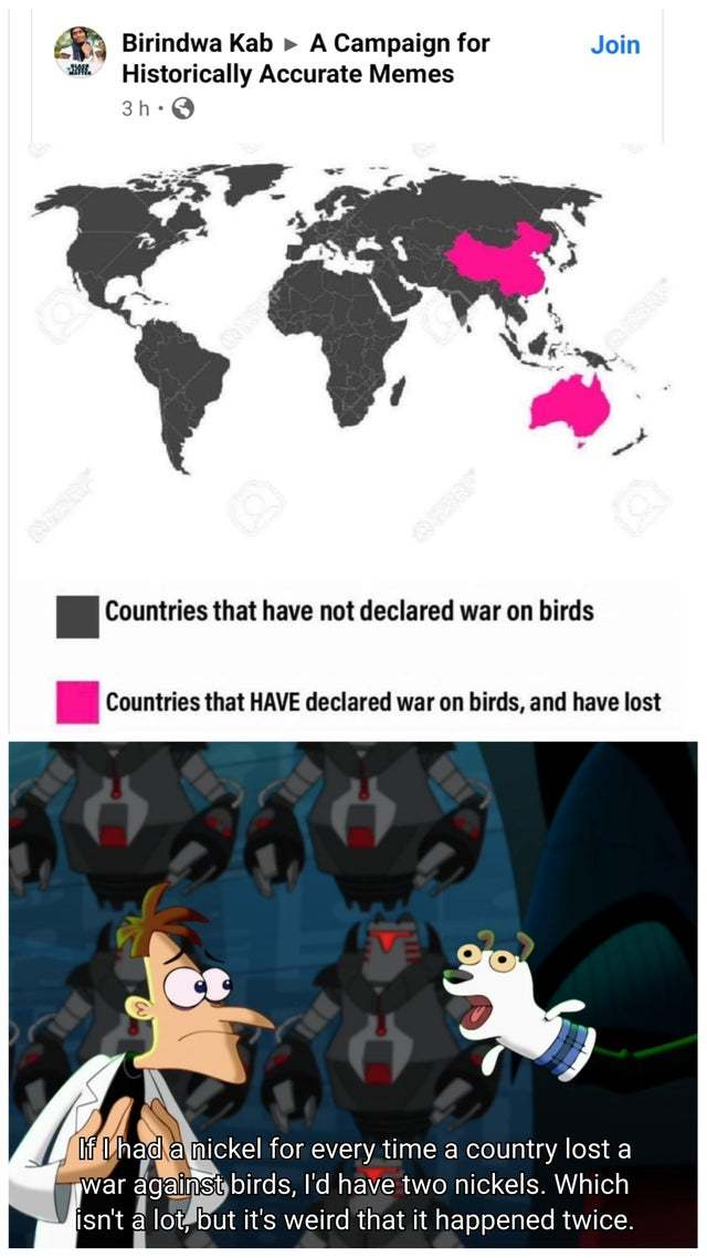 Countries that have declared war on birds - meme