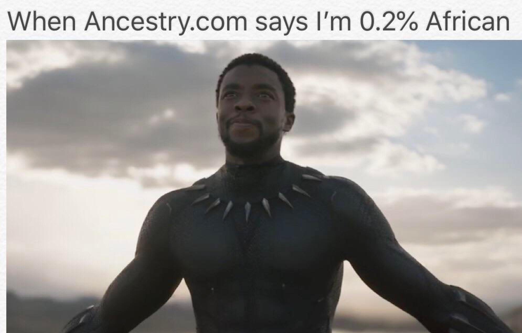 I am the king of Wakanda! - meme