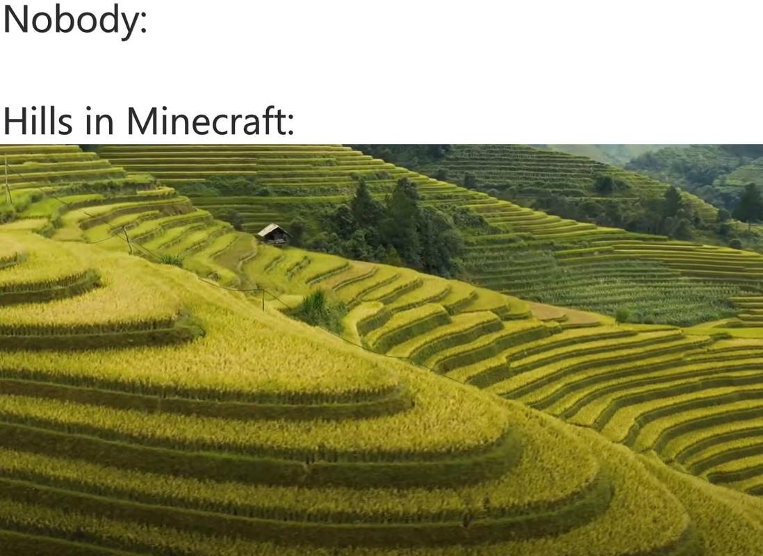 Minecraft Hills - meme