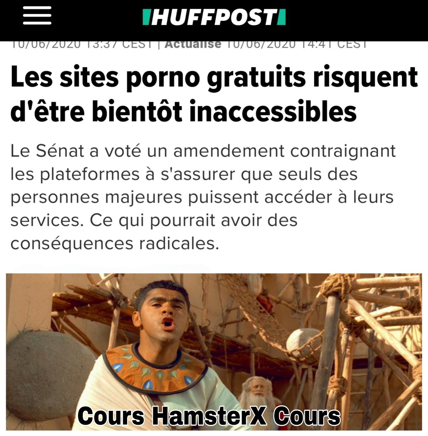 HamsterX et Obélix, Mission VPN - meme