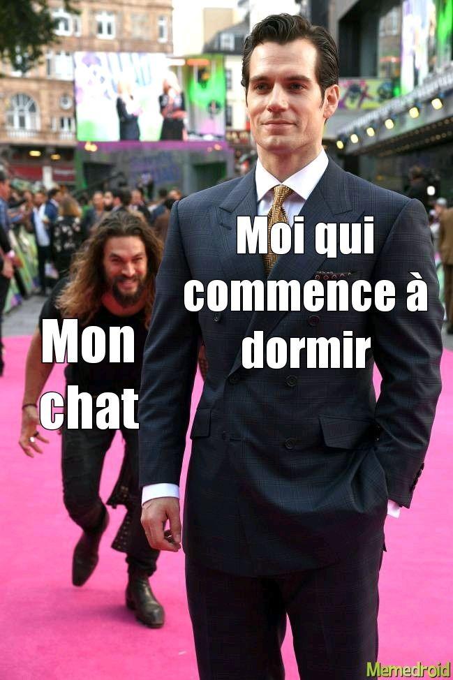 Insomnie be like - meme