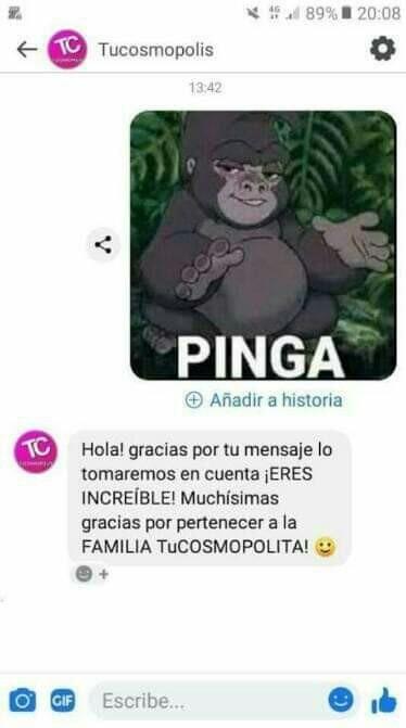 Pinga - meme