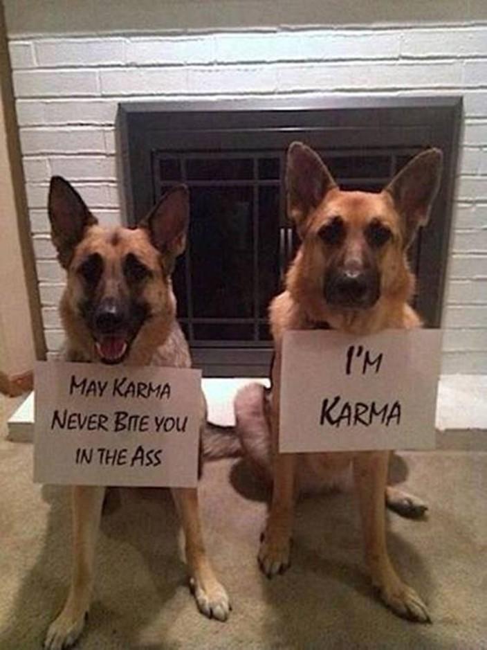 Meet Karma... - meme