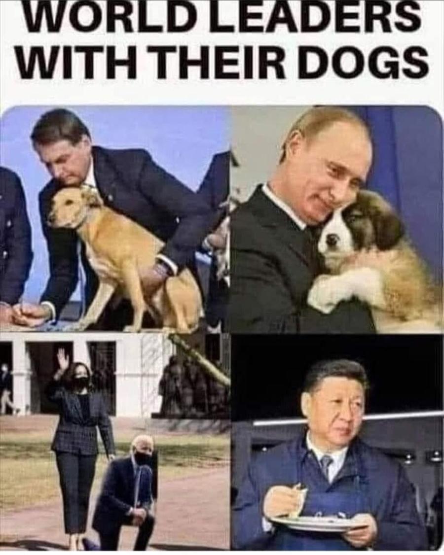 Woof! - meme