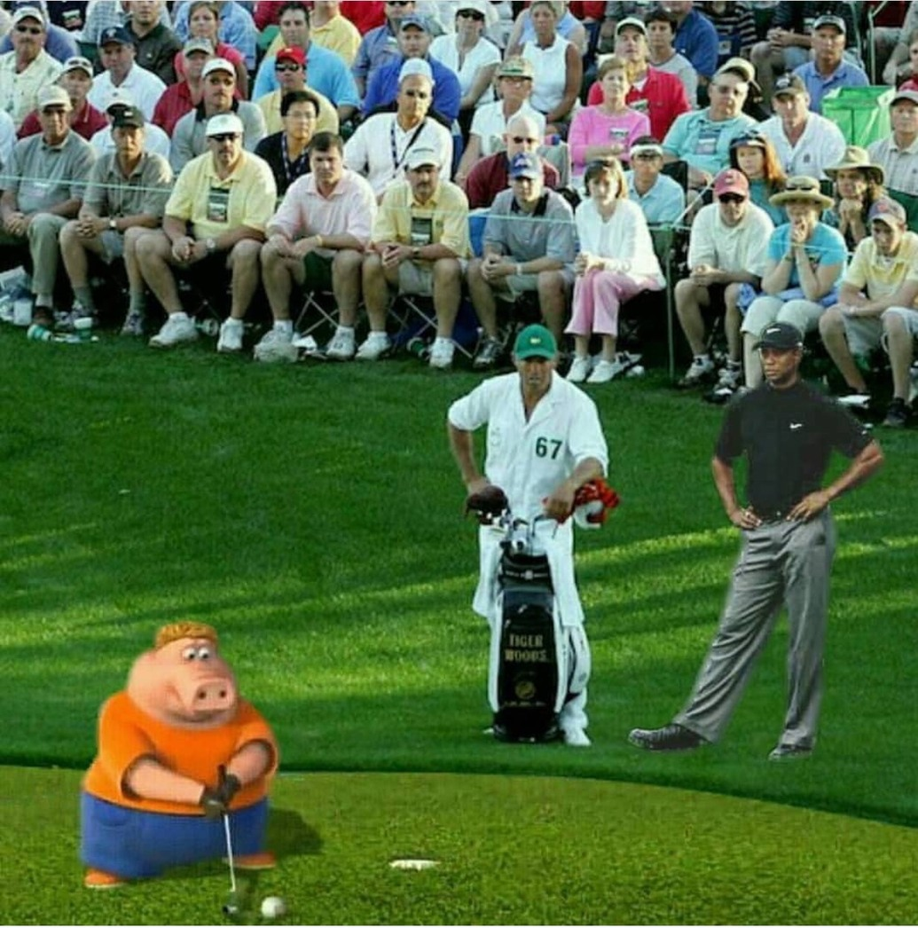 tiger woods looks different - meme