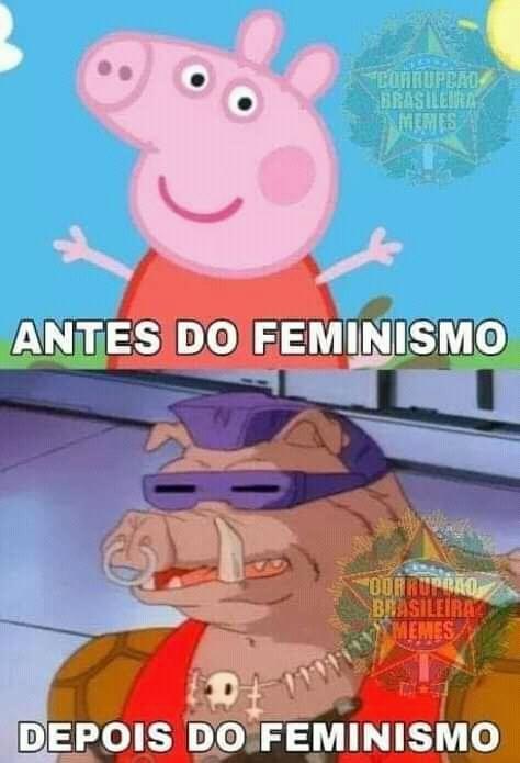 Feminista é tudo peluda e escrota - meme