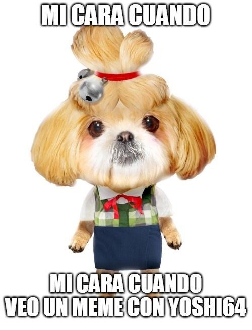 Mrda. - meme