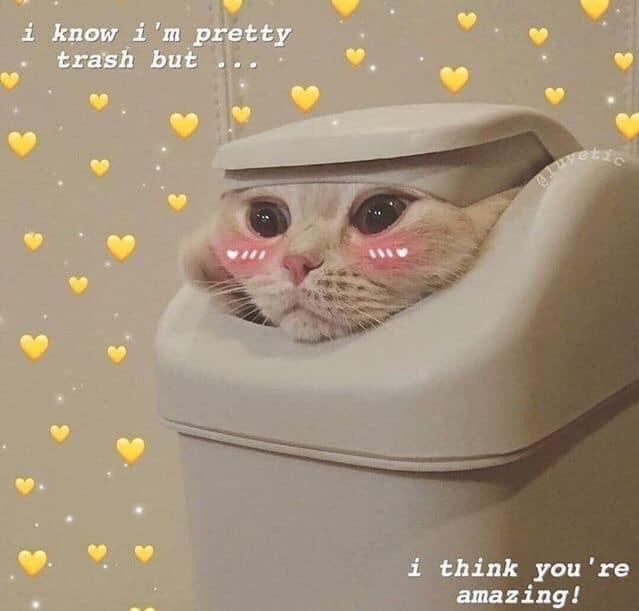 HEY UR AMAZING PERSON - meme