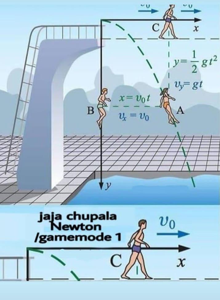 Chupala newton - meme