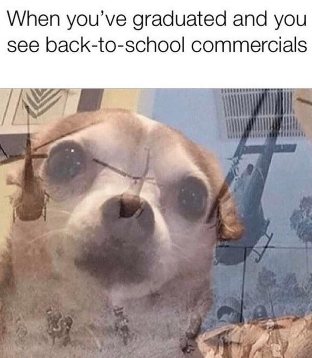 please leave me in peace - meme