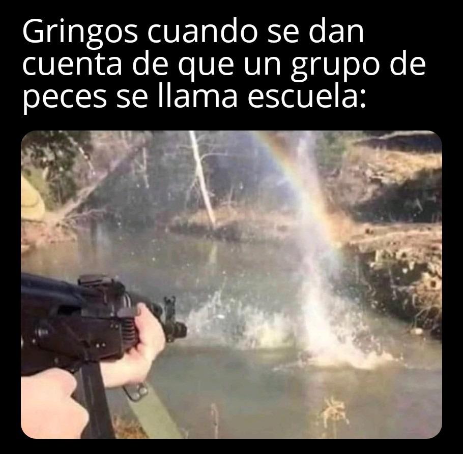 Stolen from the Gringo server - meme