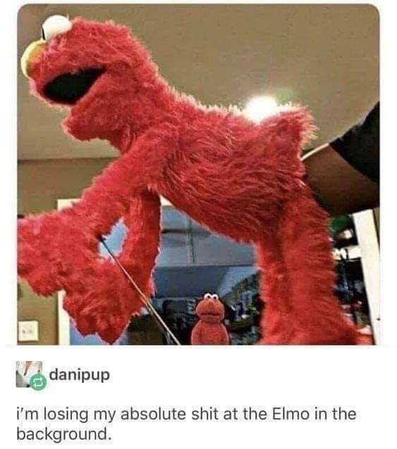 Elmo has seen some shit - meme