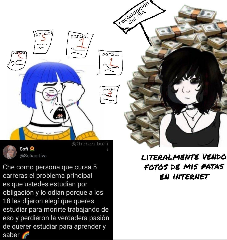la meritocracia no va con el capitalismo dannan - meme