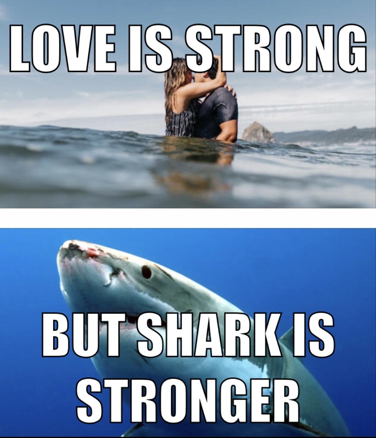 Shark very strong - meme