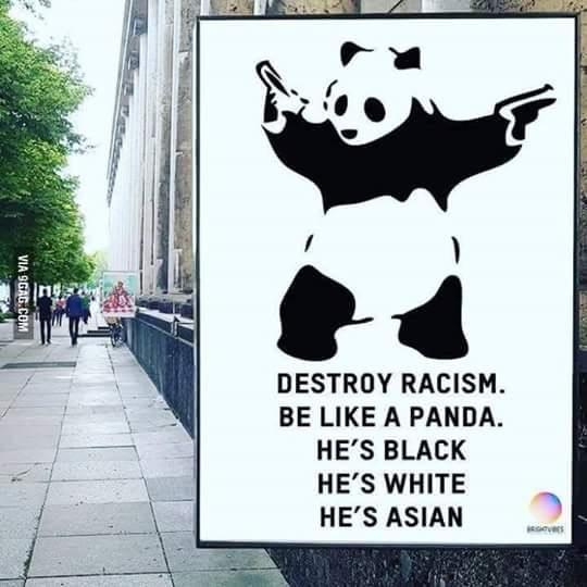 branco, preto e asiático - meme