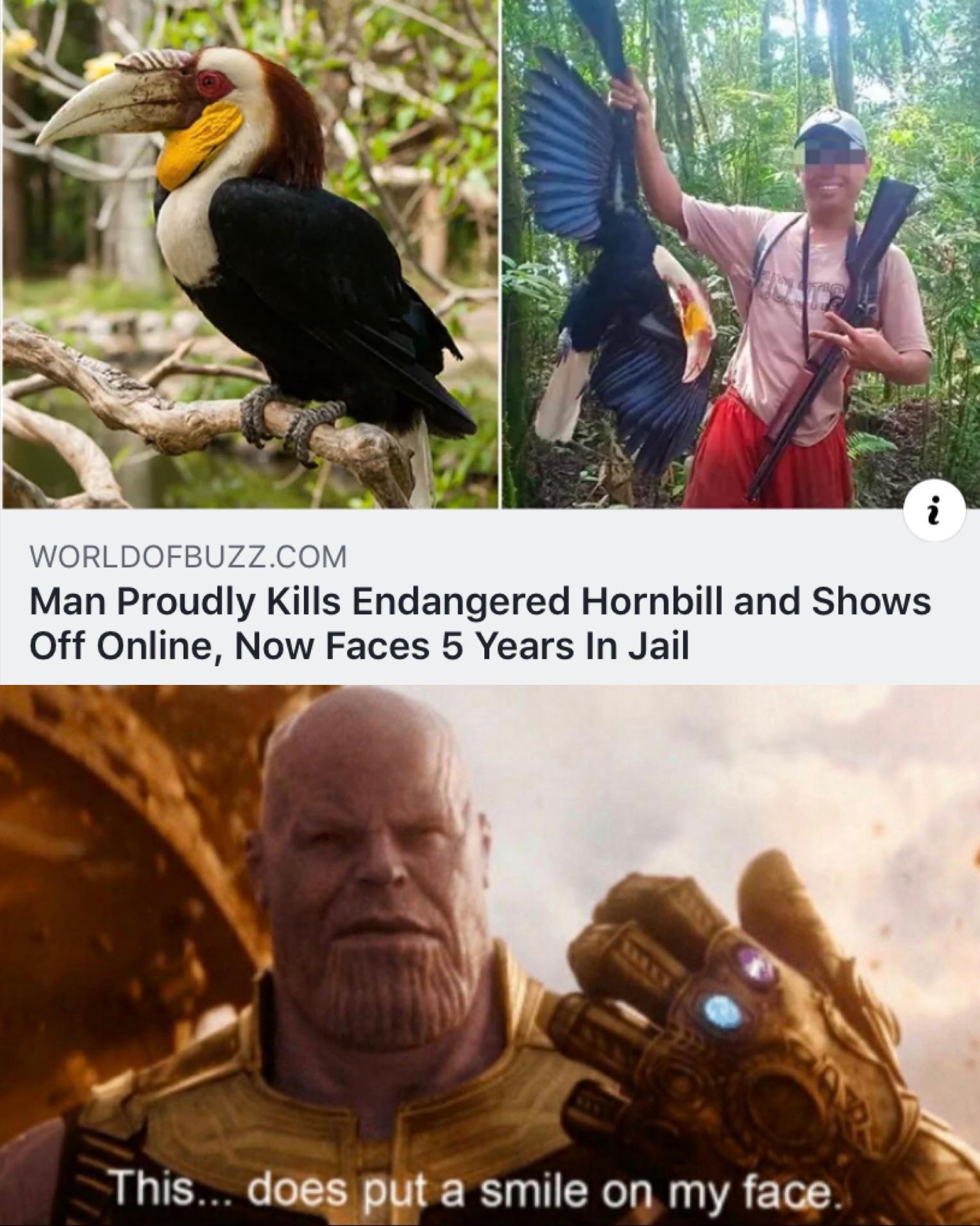 Man Thot - meme