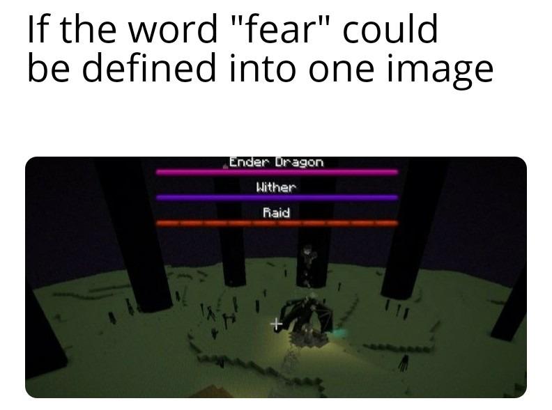 """""""Se a palavra medo fosse definida em uma imagem"""" - meme"""