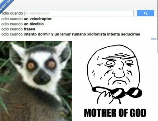 Mother of lemur - meme