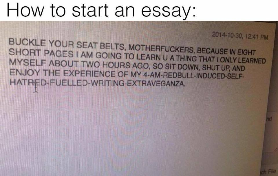 essays memes best collection of