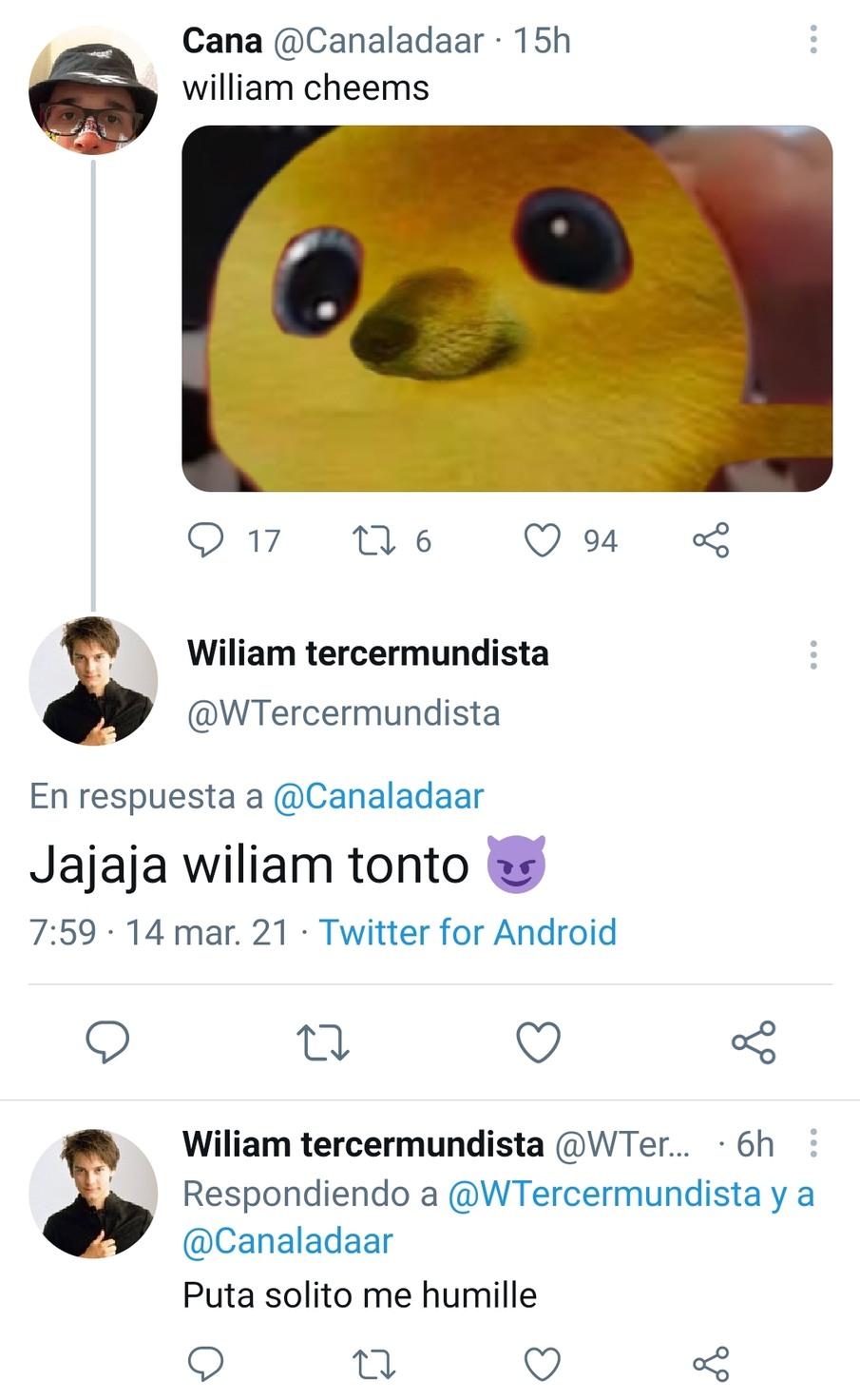 William - meme