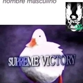 Supreme victory