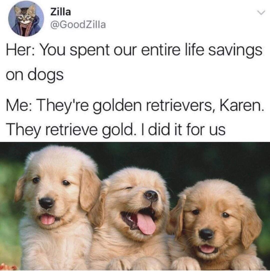 Nice investment - meme