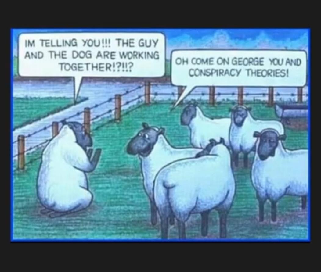 Sheeple - meme