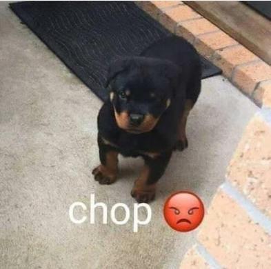 Chop - meme