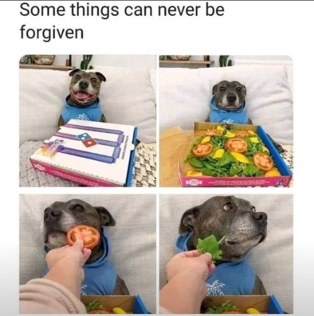no pizza.  no love - meme