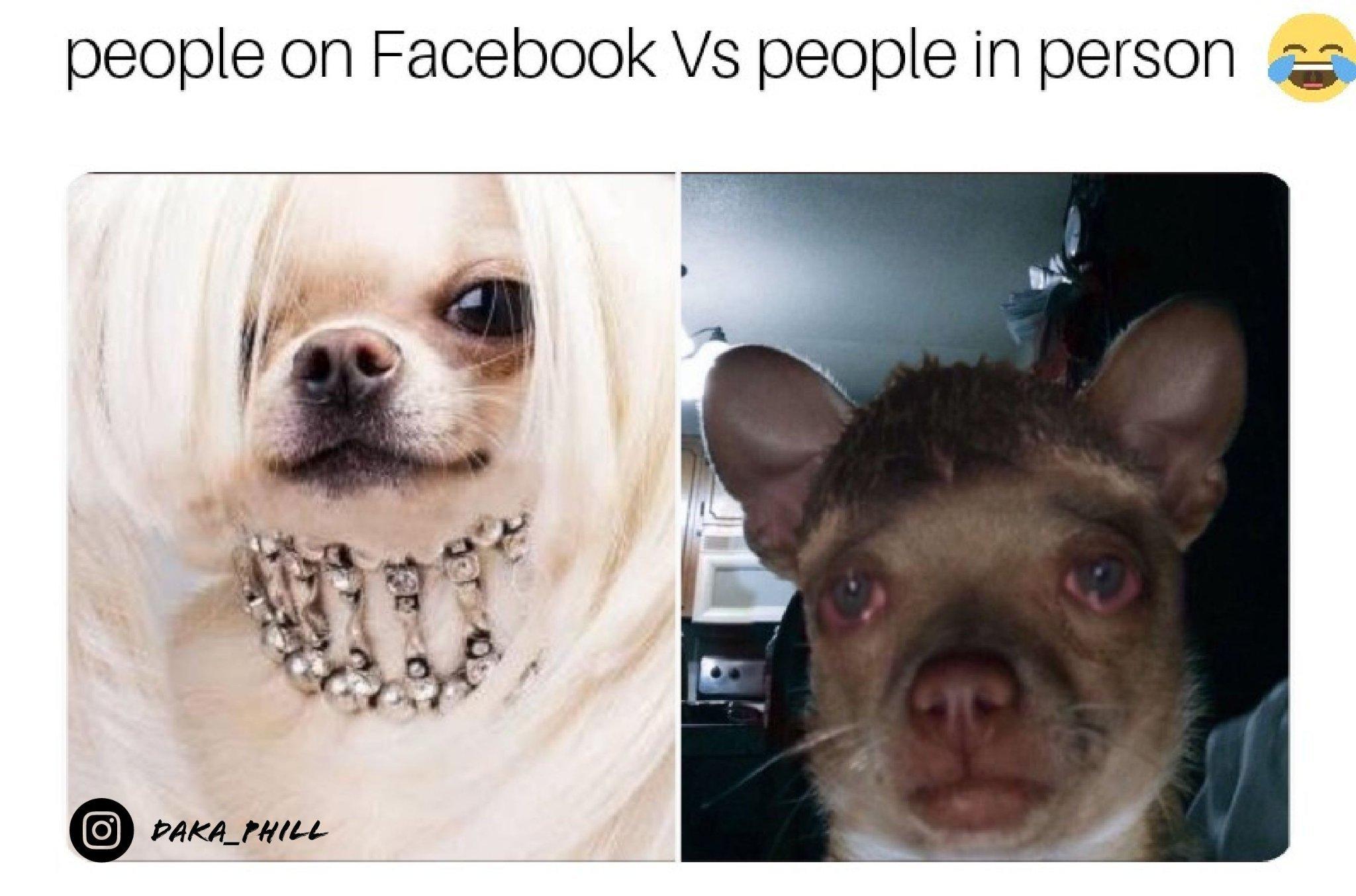Socialization - meme
